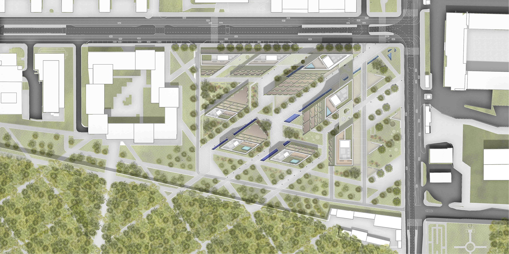 Wider realtions, roof tops plan