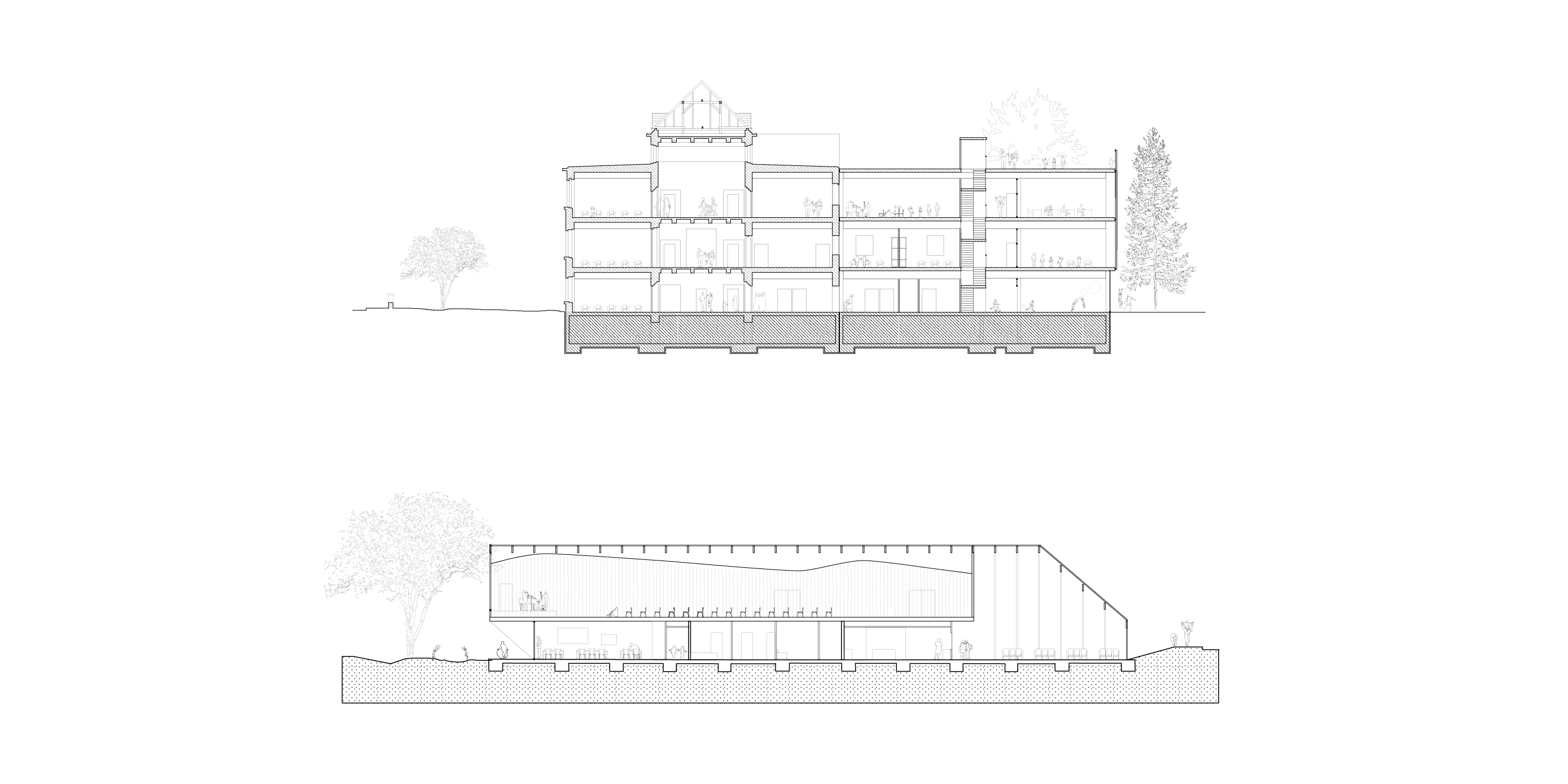 Cross section of the renovated existing school building and the new extension